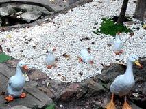 Όμορφες άσπρες κούκλες αργίλου παπιών Στοκ εικόνες με δικαίωμα ελεύθερης χρήσης
