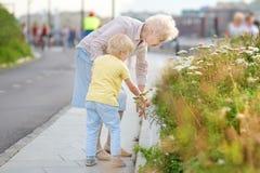 Όμορφες γιαγιά και αυτή λίγο εγγόνι που περπατά μαζί στο πάρκο Grandma και εγγονός Χρόνος ποιοτικών οικογενειών Εξερευνητές στοκ φωτογραφίες