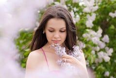 όμορφες ιώδεις ρόδινες μυρίζοντας νεολαίες γυναικών άνοιξη στοκ εικόνα