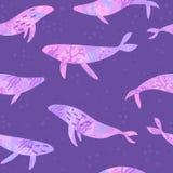 Όμορφες ιώδεις υποβρύχιες φάλαινες Στοκ Εικόνες