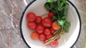 Όμορφες κόκκινες ντομάτες και φύλλα ενός πράσινα μαϊντανού στοκ εικόνες