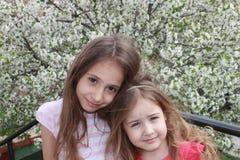 Όμορφες μικρές αδελφές με το μακρυμάλλες πορτρέτο Στοκ Φωτογραφία