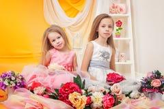 Όμορφες μικρές αδελφές που θέτουν στα κομψά φορέματα Στοκ φωτογραφίες με δικαίωμα ελεύθερης χρήσης