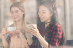 Όμορφες νέες γυναίκες που κρατούν τα άσπρα φλυτζάνια και που πίνουν το φρέσκο καφέ Στοκ φωτογραφίες με δικαίωμα ελεύθερης χρήσης