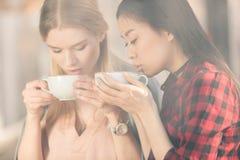 Όμορφες νέες γυναίκες που κρατούν τα άσπρα φλυτζάνια και που πίνουν το φρέσκο καφέ Στοκ Εικόνα