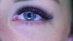 όμορφες νεολαίες γυναικών μπλε ματιών Cosmetologist που κτενίζει eyelashes απόθεμα βίντεο