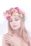 όμορφες νεολαίες πορτρέτου κοριτσιών πέπλο νυφών Στοκ Εικόνες