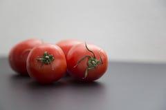 όμορφες ντομάτες Στοκ Φωτογραφίες