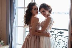 Όμορφες νύφη και παράνυμφοι στα φορέματα πολυτέλειας Στοκ φωτογραφία με δικαίωμα ελεύθερης χρήσης