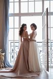 Όμορφες νύφη και παράνυμφοι στα φορέματα πολυτέλειας Στοκ εικόνες με δικαίωμα ελεύθερης χρήσης