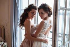 Όμορφες νύφη και παράνυμφοι στα φορέματα πολυτέλειας Στοκ εικόνα με δικαίωμα ελεύθερης χρήσης