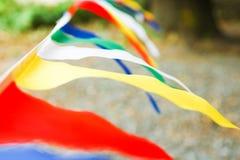 Όμορφες σημαίες σε ένα σχοινί σε ένα πάρκο στη φύση στοκ εικόνες