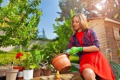 Όμορφες τέμνουσες εγκαταστάσεις γυναικών με τον κήπο pruner στοκ εικόνες