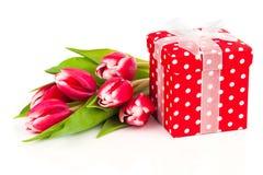 Όμορφες τουλίπες με το κόκκινο κιβώτιο δώρων Πόλκα-σημείων Στοκ Φωτογραφίες