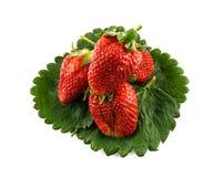 Φράουλες που απομονώνονται όμορφες στο λευκό στοκ φωτογραφία με δικαίωμα ελεύθερης χρήσης