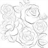 Όμορφη άνευ ραφής ανασκόπηση με τα τριαντάφυλλα Στοκ εικόνες με δικαίωμα ελεύθερης χρήσης