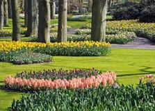 όμορφη άνοιξη κήπων Στοκ εικόνα με δικαίωμα ελεύθερης χρήσης