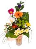 όμορφη άνοιξη λουλουδιών Στοκ Φωτογραφίες