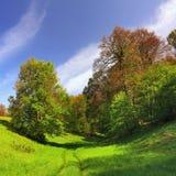 όμορφη άνοιξη τοπίων χλόης πράσινη Στοκ φωτογραφία με δικαίωμα ελεύθερης χρήσης