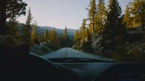 Όμορφη άποψη από το πίσω τιμόνι αυτοκινήτων, που οδηγεί κάτω από το δρόμο ξύλων βουνών στο πάρκο Yosemite ηλιοβασιλέματος σε αργή απόθεμα βίντεο