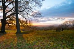 Όμορφη άποψη πτώσης μέσω των δέντρων του χαρακτηριστικού αγγλικού τοπίου στοκ φωτογραφία με δικαίωμα ελεύθερης χρήσης
