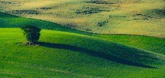 Όμορφη άποψη στην Τοσκάνη στοκ εικόνα με δικαίωμα ελεύθερης χρήσης