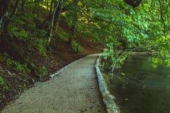 Όμορφη άποψη στο εθνικό πάρκο λιμνών Plitvice Κροατία στοκ εικόνα με δικαίωμα ελεύθερης χρήσης