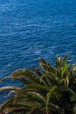 Όμορφη άποψη σχετικά με το μπλε ωκεάνιους νερό και το φοίνικα στοκ φωτογραφίες με δικαίωμα ελεύθερης χρήσης