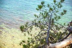 Όμορφη άποψη της άγριας αναψυχής ι Στοκ εικόνες με δικαίωμα ελεύθερης χρήσης
