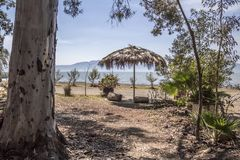 Όμορφη άποψη της λίμνης chapala που πλαισιώνεται με τα δέντρα και μια ομπρέλα φοινικών στοκ εικόνες με δικαίωμα ελεύθερης χρήσης