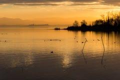 Όμορφη άποψη της λίμνης Trasimeno στο ηλιοβασίλεμα με τα πουλιά στο νερό και Castiglione del Lago την πόλη στο υπόβαθρο στοκ φωτογραφίες