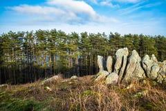 Όμορφη άποψη τοπίων με τα δέντρα και τους βράχους πεύκων στο μπλε ουρανό, δημιουργικό υπόβαθρο, βασκική χώρα, Γαλλία Στοκ Φωτογραφίες