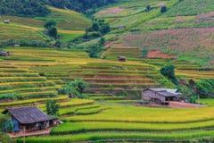 Όμορφη άποψη τοπίων του πεζουλιού ρυζιού και του μικρού σπιτιού στοκ φωτογραφία με δικαίωμα ελεύθερης χρήσης
