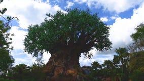 Όμορφη άποψη του δέντρου της ζωής στο ζωικό βασίλειο απόθεμα βίντεο