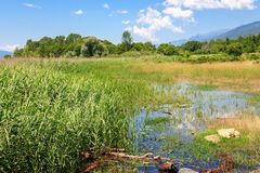 Όμορφη άποψη του εθνικού πάρκου λιμνών Kerkini, Ελλάδα Στοκ φωτογραφίες με δικαίωμα ελεύθερης χρήσης
