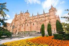 Όμορφη άποψη του καθεδρικού ναού Σαλαμάνκας, περιοχή του Leon, της Ισπανίας Στοκ Εικόνες