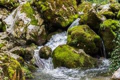 Όμορφη άποψη του φυσικού καταρράκτη με το κρύσταλλο - καθαρίστε το νερό μεταξύ των πράσινων ξύλων στοκ φωτογραφία με δικαίωμα ελεύθερης χρήσης