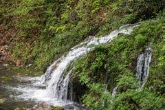Όμορφη άποψη του φυσικού καταρράκτη με το κρύσταλλο - καθαρίστε το νερό μεταξύ των πράσινων ξύλων στοκ φωτογραφίες