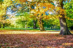 Όμορφη άποψη του Χάιντ Παρκ κατά τη διάρκεια της εποχής φθινοπώρου, Λονδίνο, Αγγλία, UK στοκ εικόνες με δικαίωμα ελεύθερης χρήσης