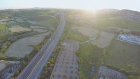 Όμορφη άποψη των οργανικών τομέων, κήποι, έδαφος εγκαταστάσεων Γεωργία _ απόθεμα βίντεο