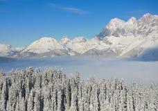 Όμορφη άποψη των χιονισμένων ερυθρελατών, των βουνών και των χαμηλών σύννεφων το χειμώνα Στοκ Εικόνες