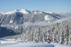 Όμορφη άποψη των χιονισμένων ερυθρελατών, των βουνών και των χαμηλών σύννεφων το χειμώνα Στοκ Φωτογραφία