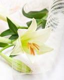 Όμορφη άσπρη ανθοδέσμη λουλουδιών κρίνων Πάσχας Στοκ φωτογραφία με δικαίωμα ελεύθερης χρήσης