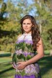 όμορφη έγκυος γυναίκα ε&kappa Στοκ εικόνα με δικαίωμα ελεύθερης χρήσης