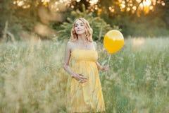 Όμορφη έγκυος γυναίκα στον τομέα στοκ εικόνες