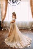 Όμορφη έγκυος γυναίκα στο μακρύ φόρεμα Στοκ Φωτογραφία