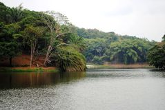 Όμορφη λίμνη στην Αφρική Στοκ φωτογραφίες με δικαίωμα ελεύθερης χρήσης