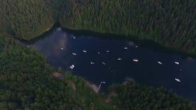 Όμορφη λίμνη στην Αλάσκα απόθεμα βίντεο