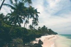 Όμορφη ακτή, τυρκουάζ άποψη της θάλασσας με τους φοίνικες, Στοκ φωτογραφία με δικαίωμα ελεύθερης χρήσης