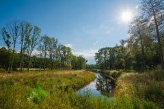 Όμορφη ακόμα λίμνη με τα δέντρα στον ορίζοντα και τα άσπρα αυξομειούμενα σύννεφα στον ουρανό Ειρηνική θερινή ημέρα στο εξοχικό σπ στοκ φωτογραφία με δικαίωμα ελεύθερης χρήσης
